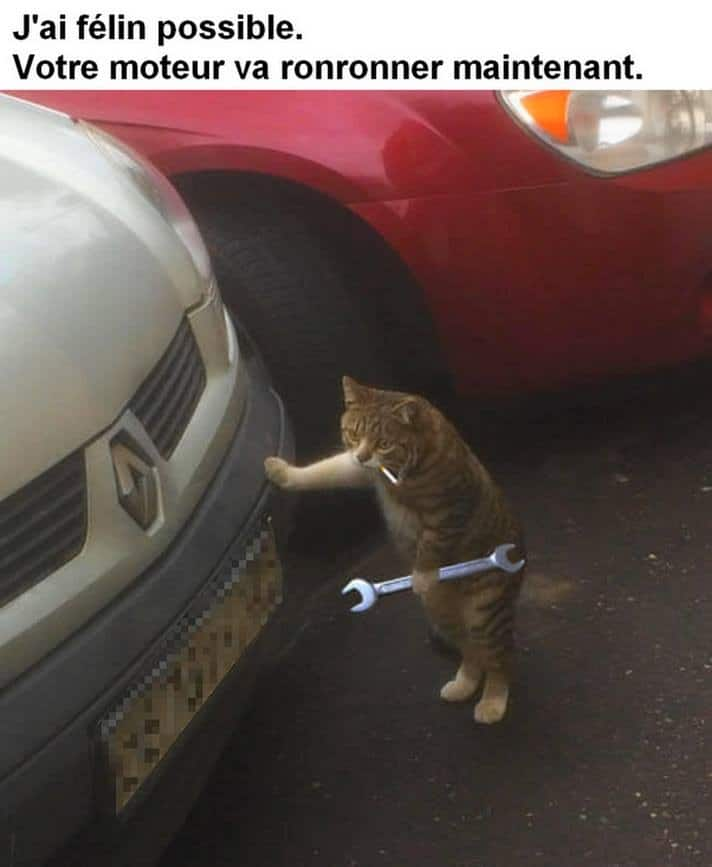 Votre moteur va ronronner maintenant
