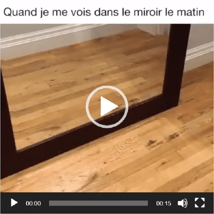 Quand je me vois dans le miroir le matin