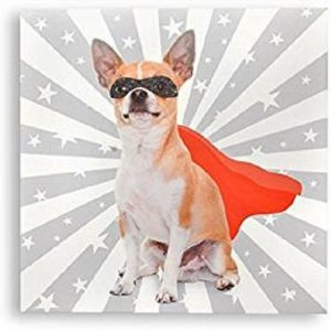 Tableau toile Chien / Chat Super héros - Humour