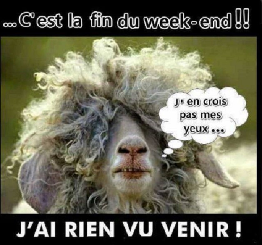 C'est la fin du week-end !!