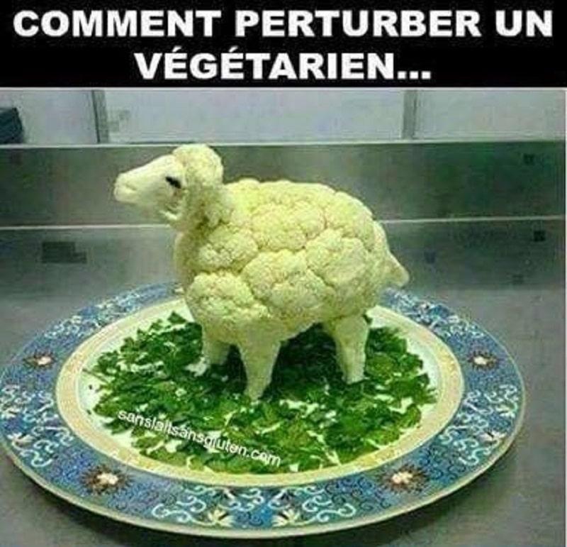 Comment perturber un végétarien