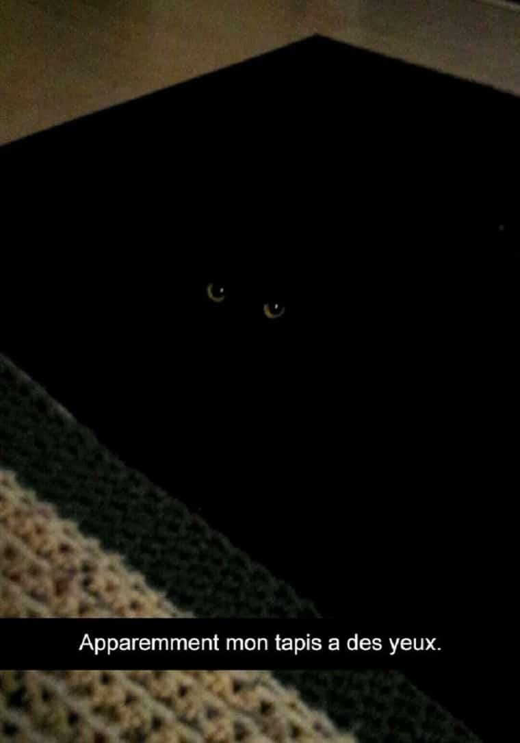 Apparemment mon tapis a des yeux