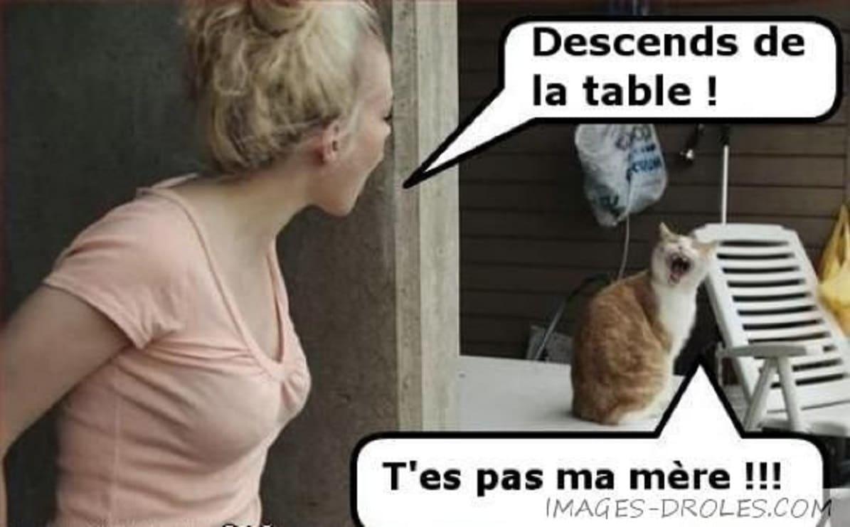 Descends de la table !