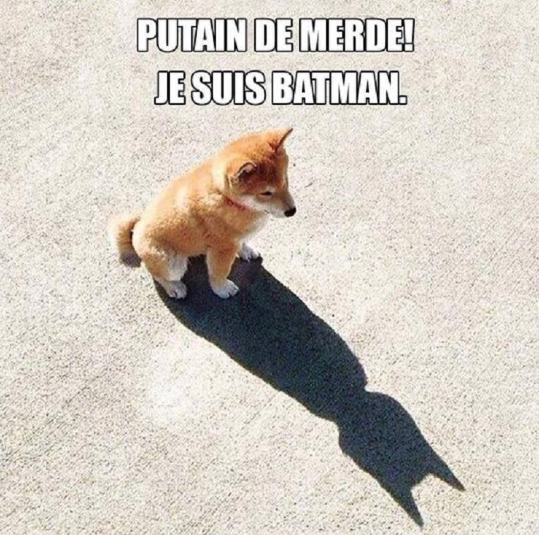 Putain de merde ! Je suis Batman.