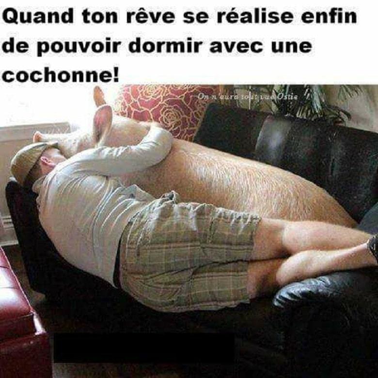 Quand ton rêve se réalise enfin de pouvoir dormir avec une cochonne !