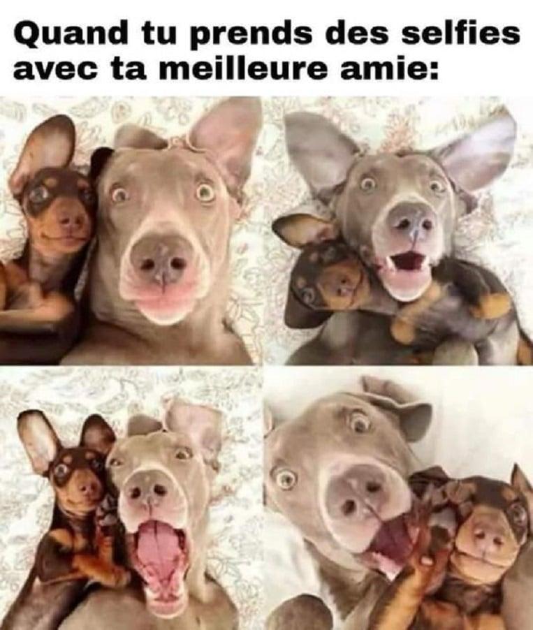 Quand tu prends des selfies avec ta meilleure amie