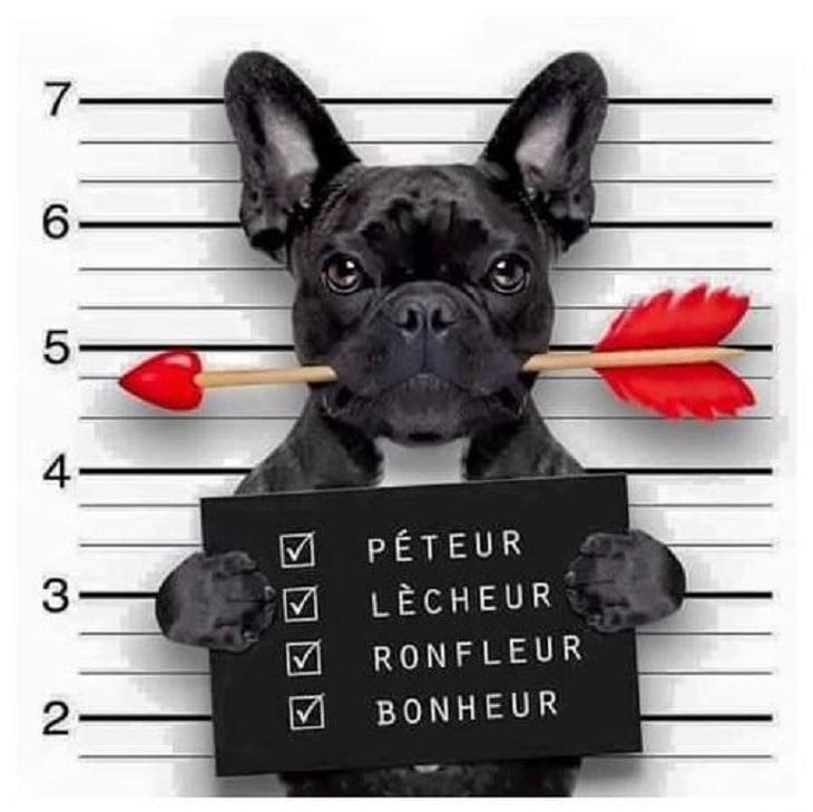 Péteur, Lécheur, Ronfleur...