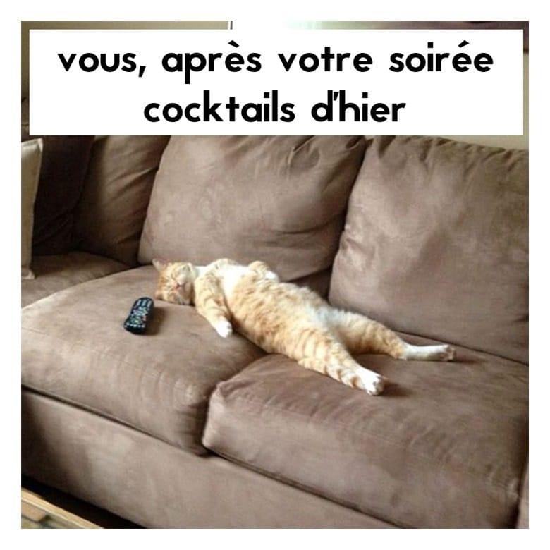 Vous, après votre soirée cocktails d'hier
