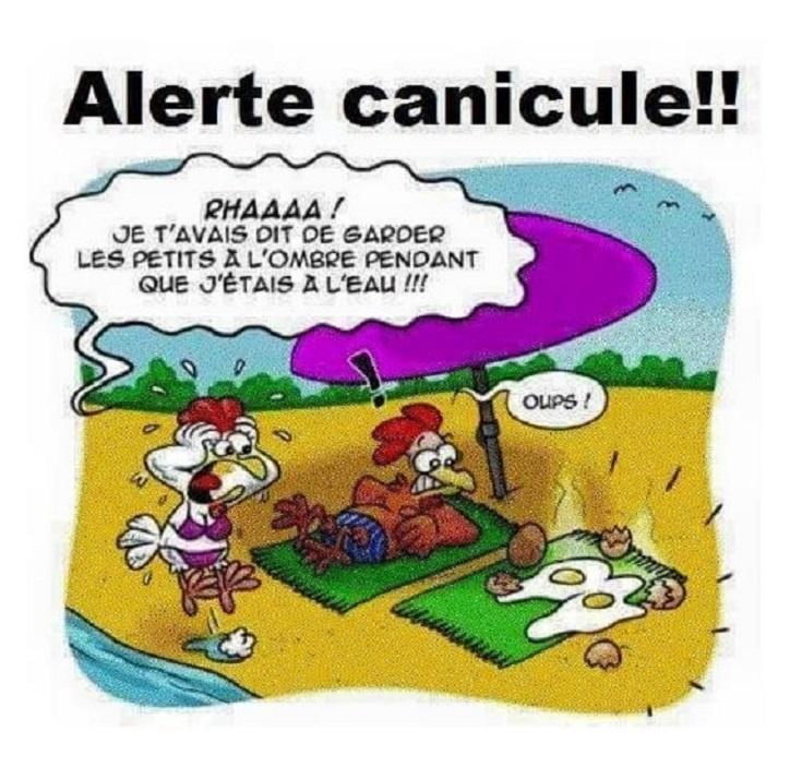 Alerte canicule !!