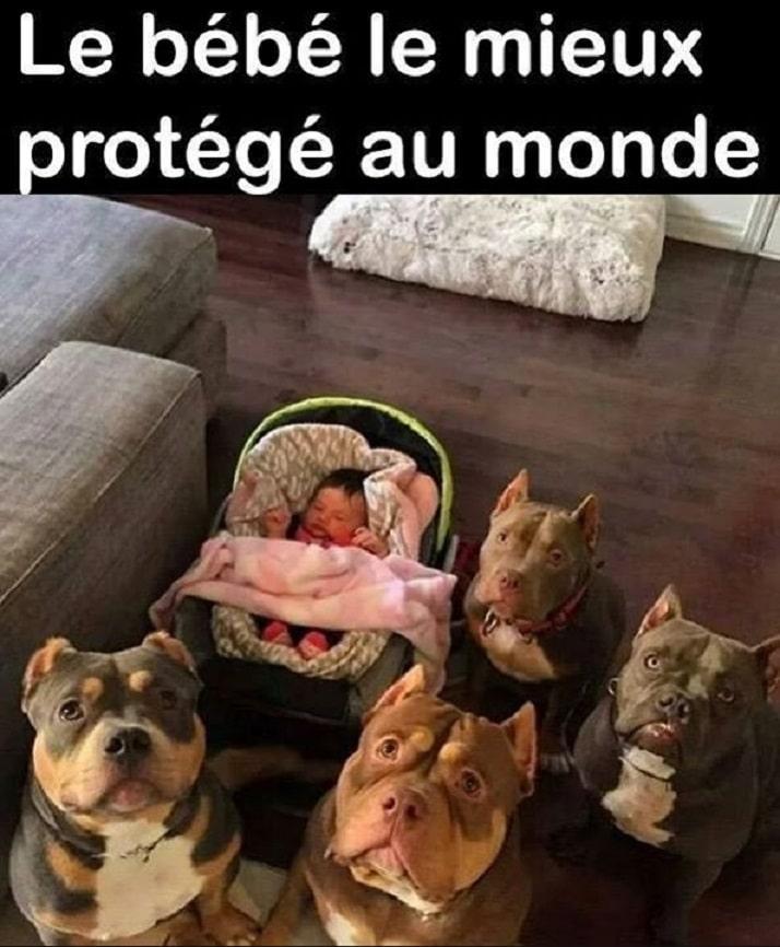 Le bébé le mieux protégé au monde