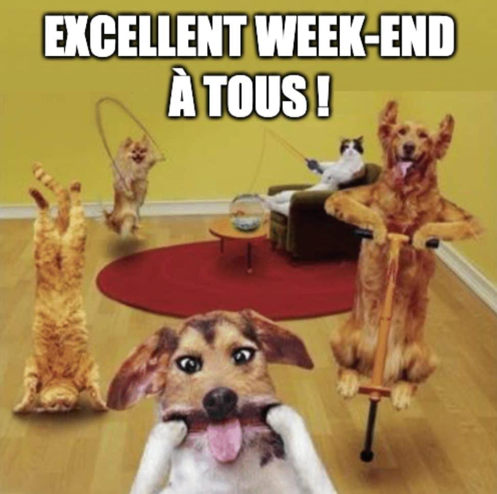 Excellent week-end à tous !