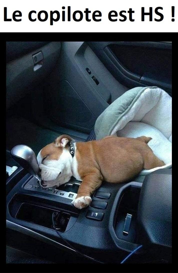 Le copilote est HS