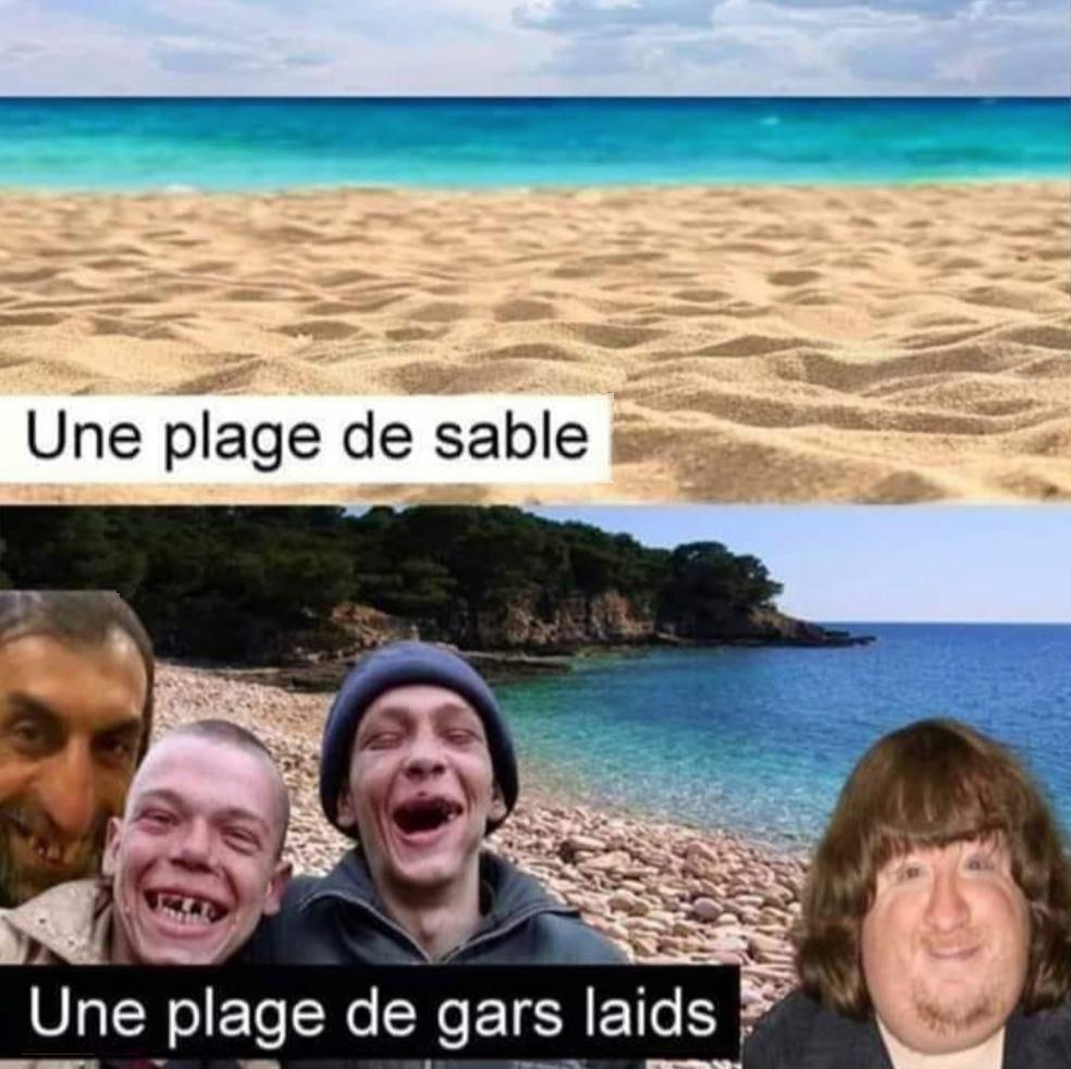Une plage de sable