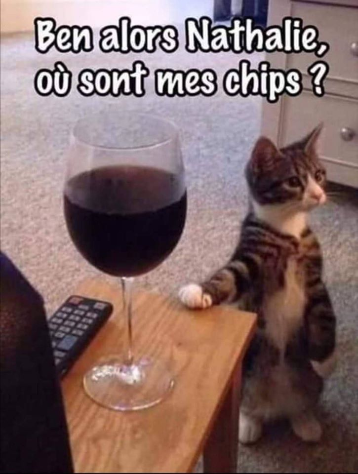 Ben alors Nathalie, ou sont mes chips
