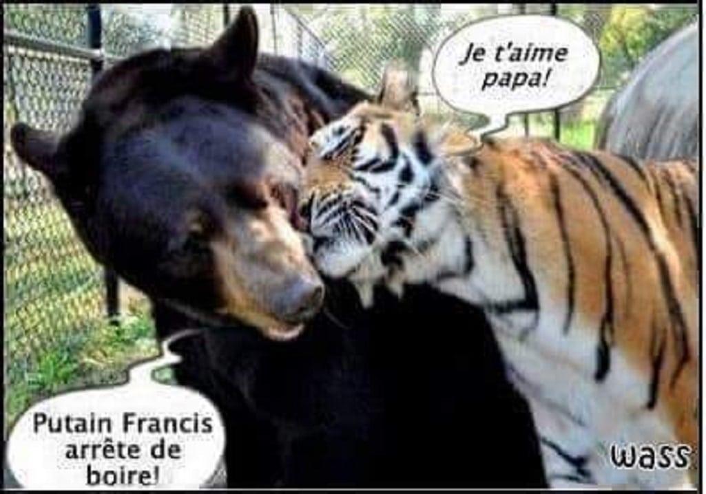 Francis arrête de boire