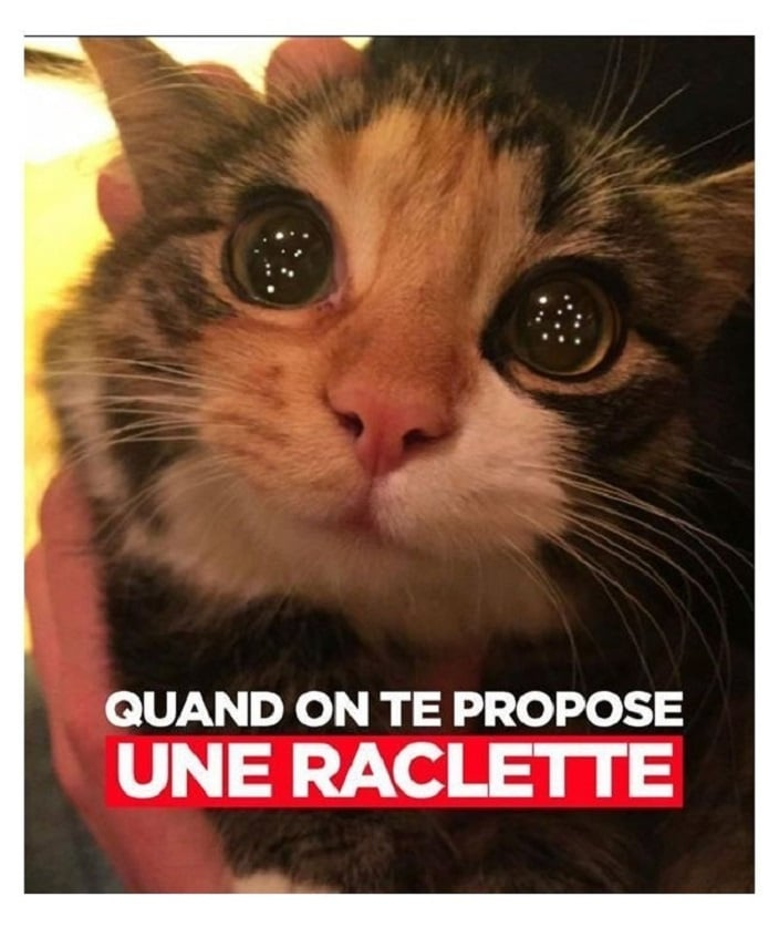 Quand on te propose une raclette