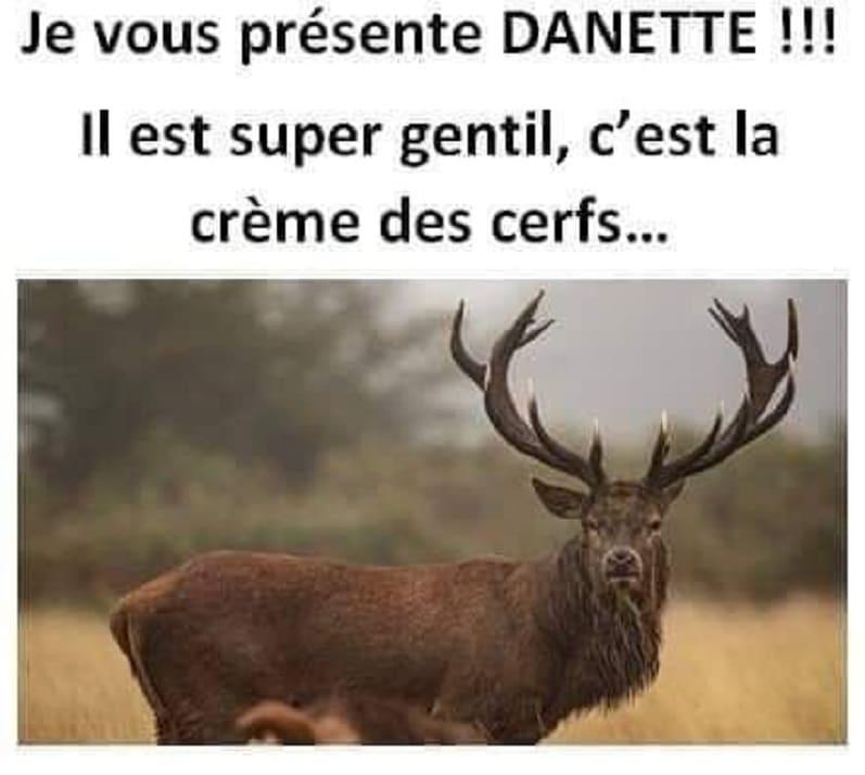 Je vous présente DANETTE !!!