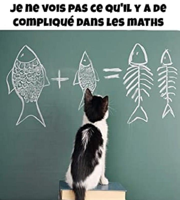 Je ne vois pas ce qu'il y a de compliqué dans les maths