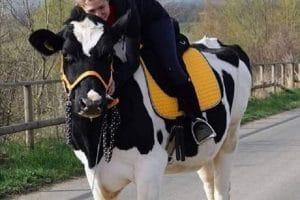 Lucie, 2 Passions dans la vie Le cannabis et les chevaux
