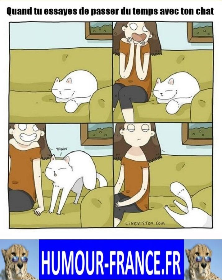 Quand tu essayes de passer du temps avec ton chat