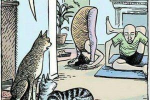 Cela fait des années qu'ils font du yoga