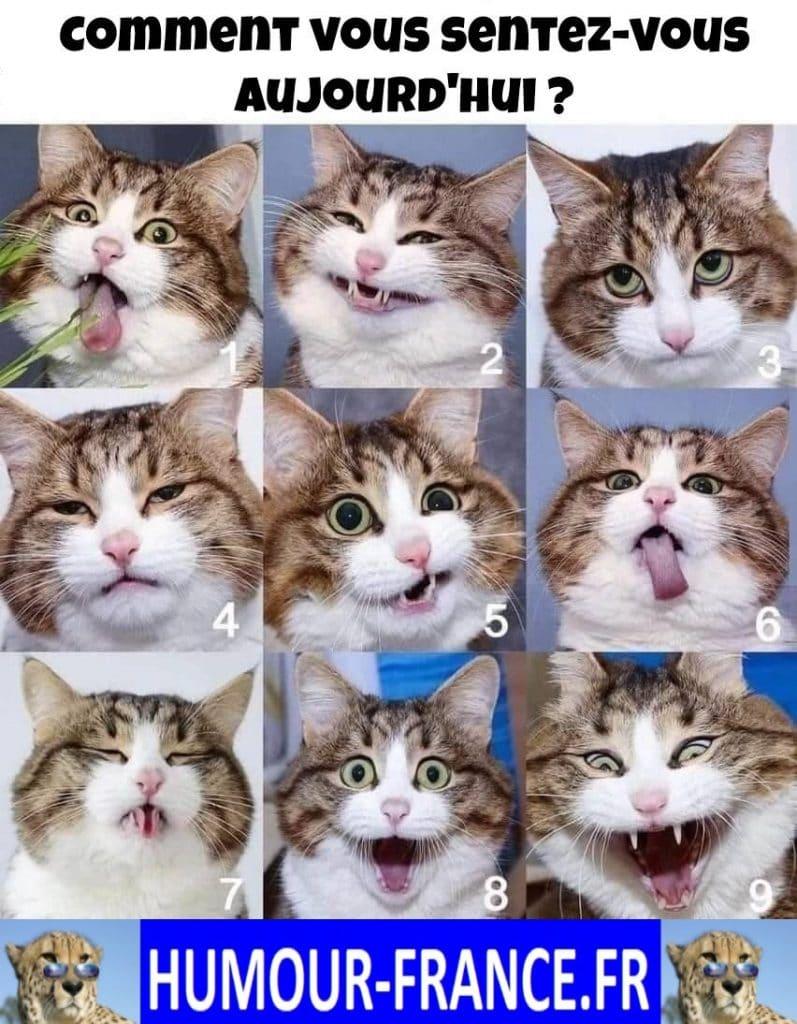 Comment vous sentez-vous aujourd'hui