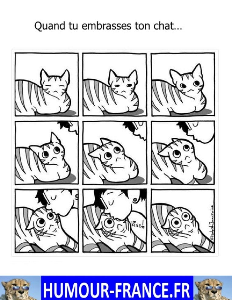 Quand tu embrasses ton chat …