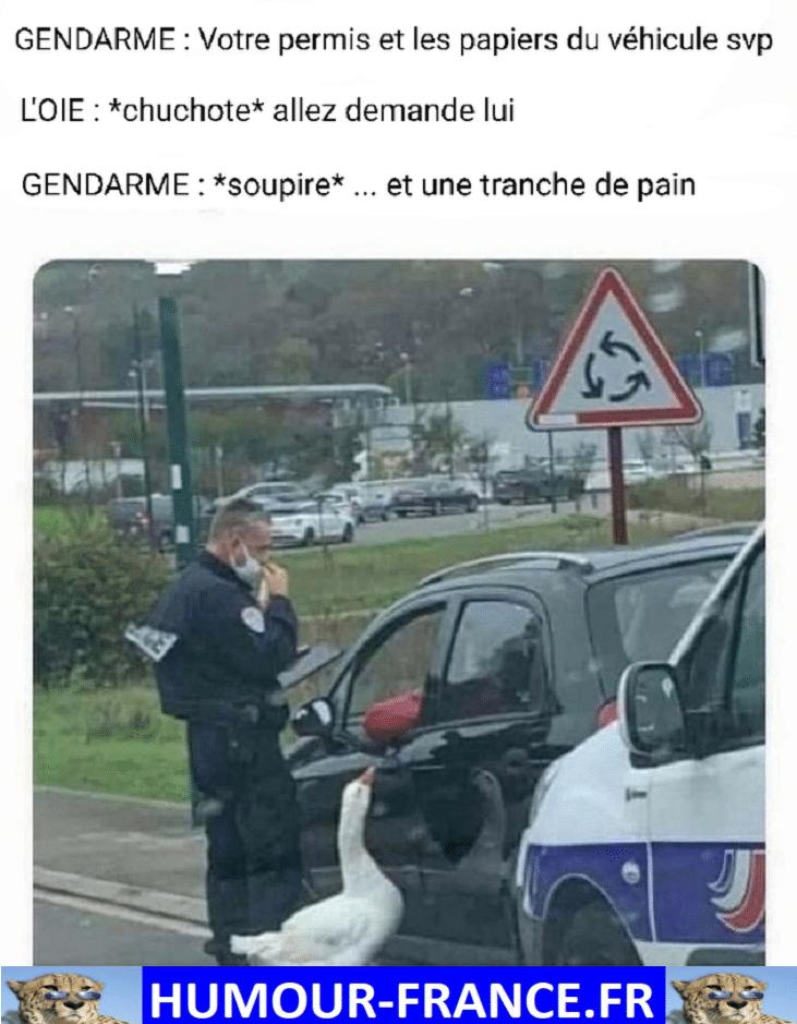 Votre permis et les papiers du véhicule